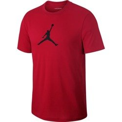 Air Jordan Iconic 23/7 T-Shirt - AV1167-687