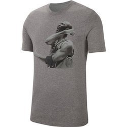 Air Jordan Photo T-Shirt - CN3588-091