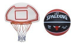 Basketball Backboard MASTER 90 x 60 cm + Spalding Chicago Bulls
