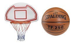Basketball Backboard MASTER 90 x 60 cm + TF-250 Basketball