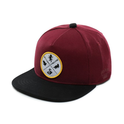 Kids Vans x HARRY POTTER™ Icons Snapback Cap - VN0A3UQCUUW