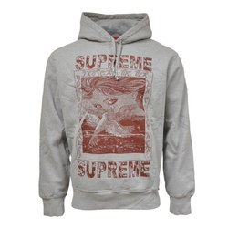 Supreme Doves Hooded Sweatshirt - FW19SW32
