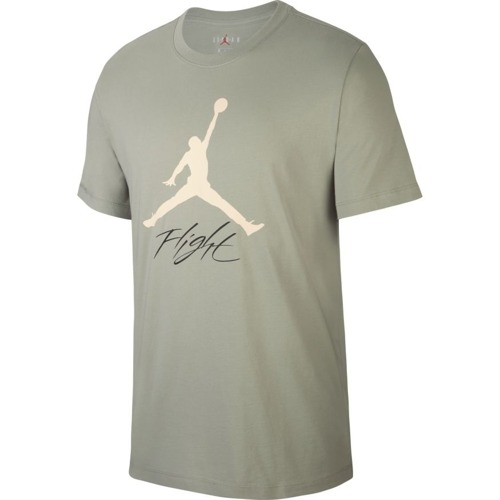 Air Jordan Jumpman Flight T-shirt - AO0664-334